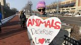 Demonstrators gather outside Dow Event Center to protest Shrine Circus