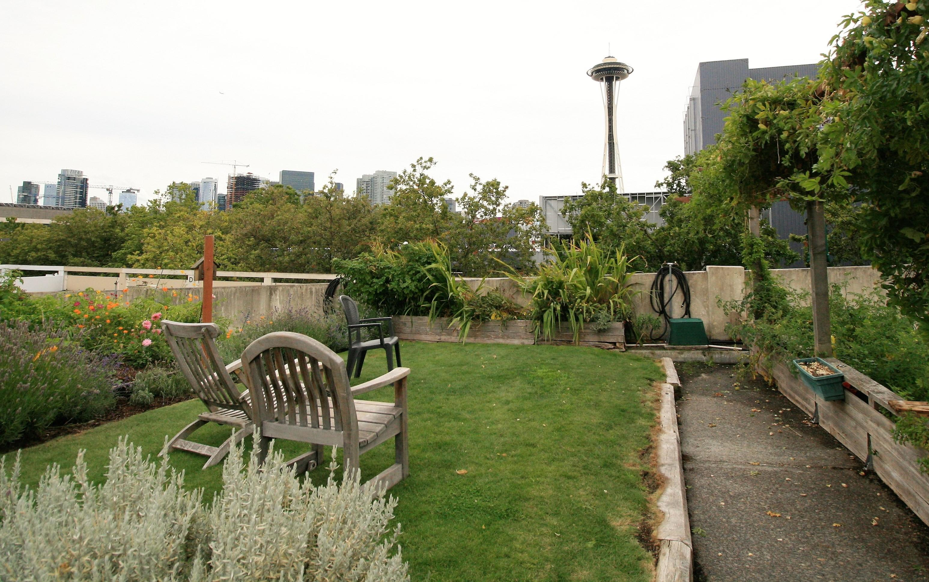 The UpGarden is part of Seattle's P-Patch Community Garden program. (Image: Elizabeth Blanton / Seattle Refined)