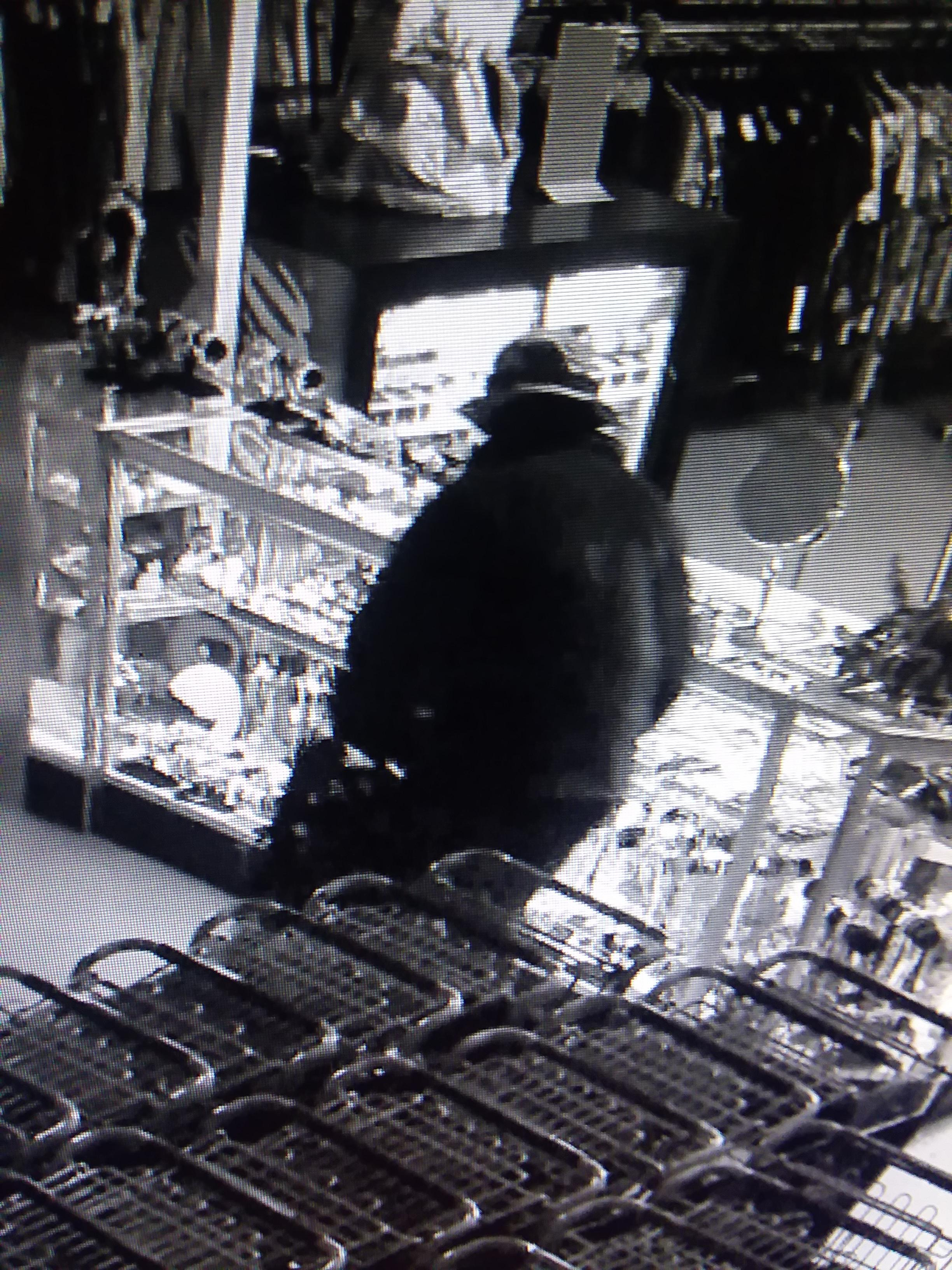 Goodwill has offered a $10,000 reward after someone broke into a Eugene retail store early Wednesday morning. (From store surveillance camera)