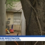 Exclusive: Neighbor claims she overheard abuse at home where children found chained