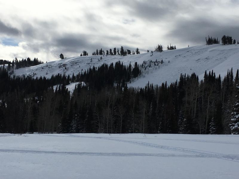 Whiskey Hill avalanche (Photo: Utah Avalanche Center)