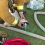 Bakersfield firefighters to receive PETA award for saving dog from a house fire
