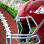 Arkansas Razorbacks' 2018 football schedule announced