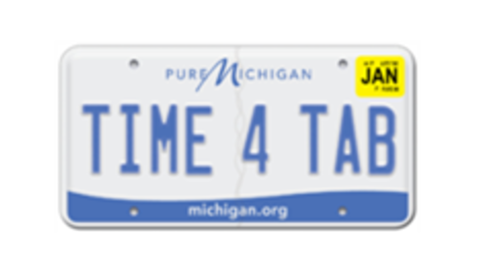 Michigan governor approves 30-day license plate grace period | WPBN