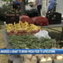 Africatown to get fresh produce market thanks to $50k grant