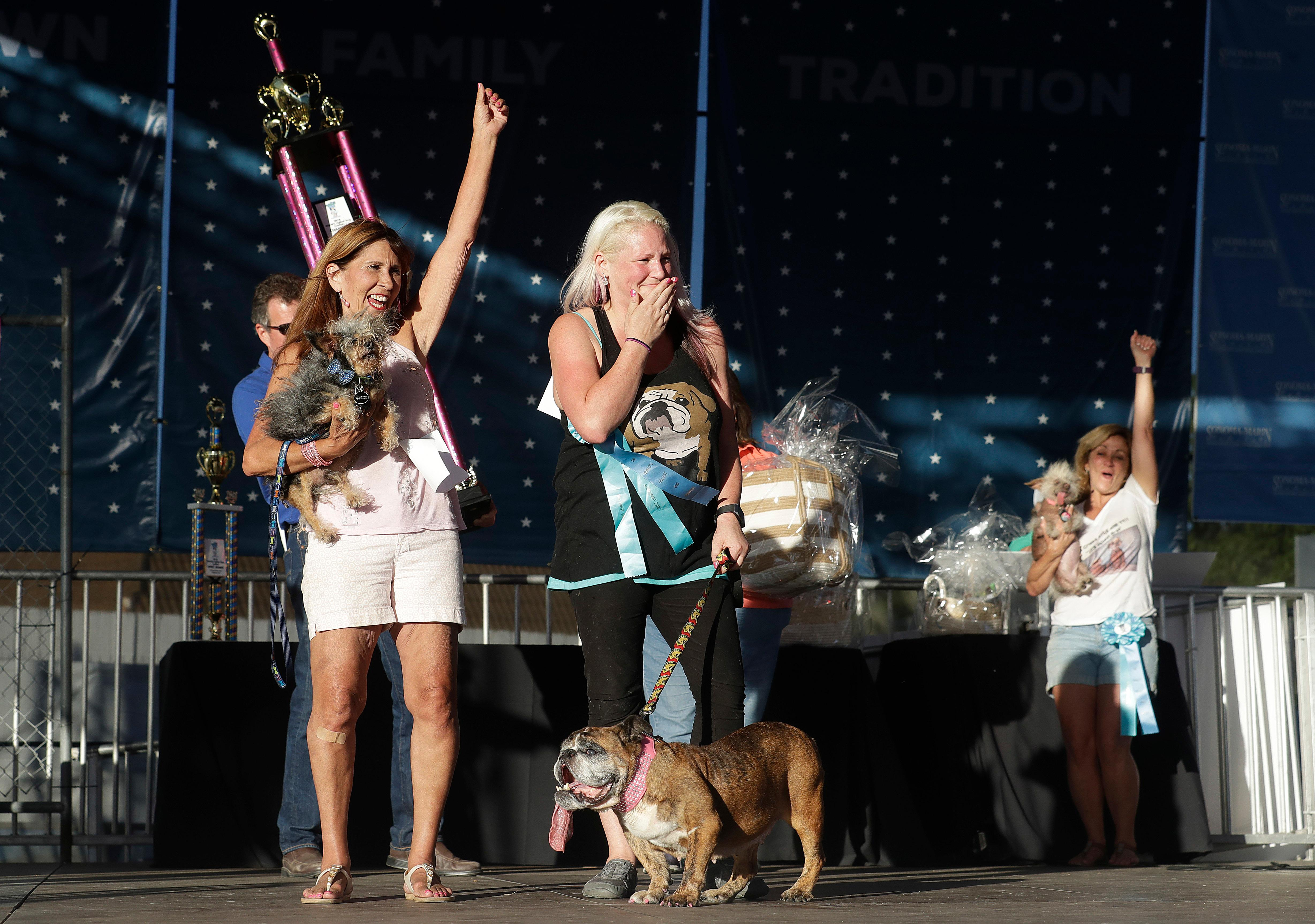 Megan Brainard, center, reacts after her dog Zsa Zsa, an English Bulldog, bottom, is announced the winner of the World's Ugliest Dog Contest at the Sonoma-Marin Fair in Petaluma, Calif., Saturday, June 23, 2018. Also pictured at left is Yvonne Morones, holding her dog Scamp, who placed second, and Linda Elmquist, holding her dog Josie, who finished third. (AP Photo/Jeff Chiu)