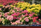 Greenhouses and gardens bloom for Mother's Day