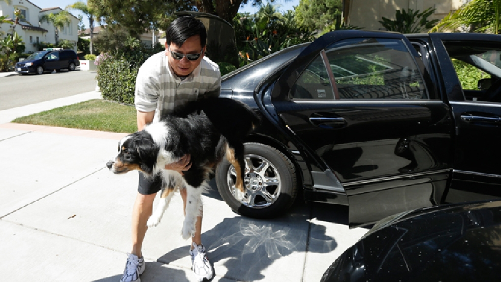 Midi Teng carries the family dog, Pup, out of the car as he arrives home from wildfire evacuations Friday, May 16, 2014, in Carlsbad, Calif. Some evacuation orders were lifted early Friday in an area near the fiercest of several wildfires in San Diego County, as crews building containment lines around the blazes hoped cooler temperatures will help them make further progress. (AP Photo/Gregory Bull)