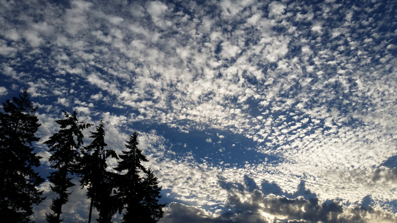Altocumulus clouds over Seattle. Note the shadow the lower clouds cast on the higher clouds in the bottom right corner. (Photo: Steve Endlich)
