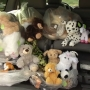 Stuffed animal donations help brighten day of kids staying at Capital High School shelter