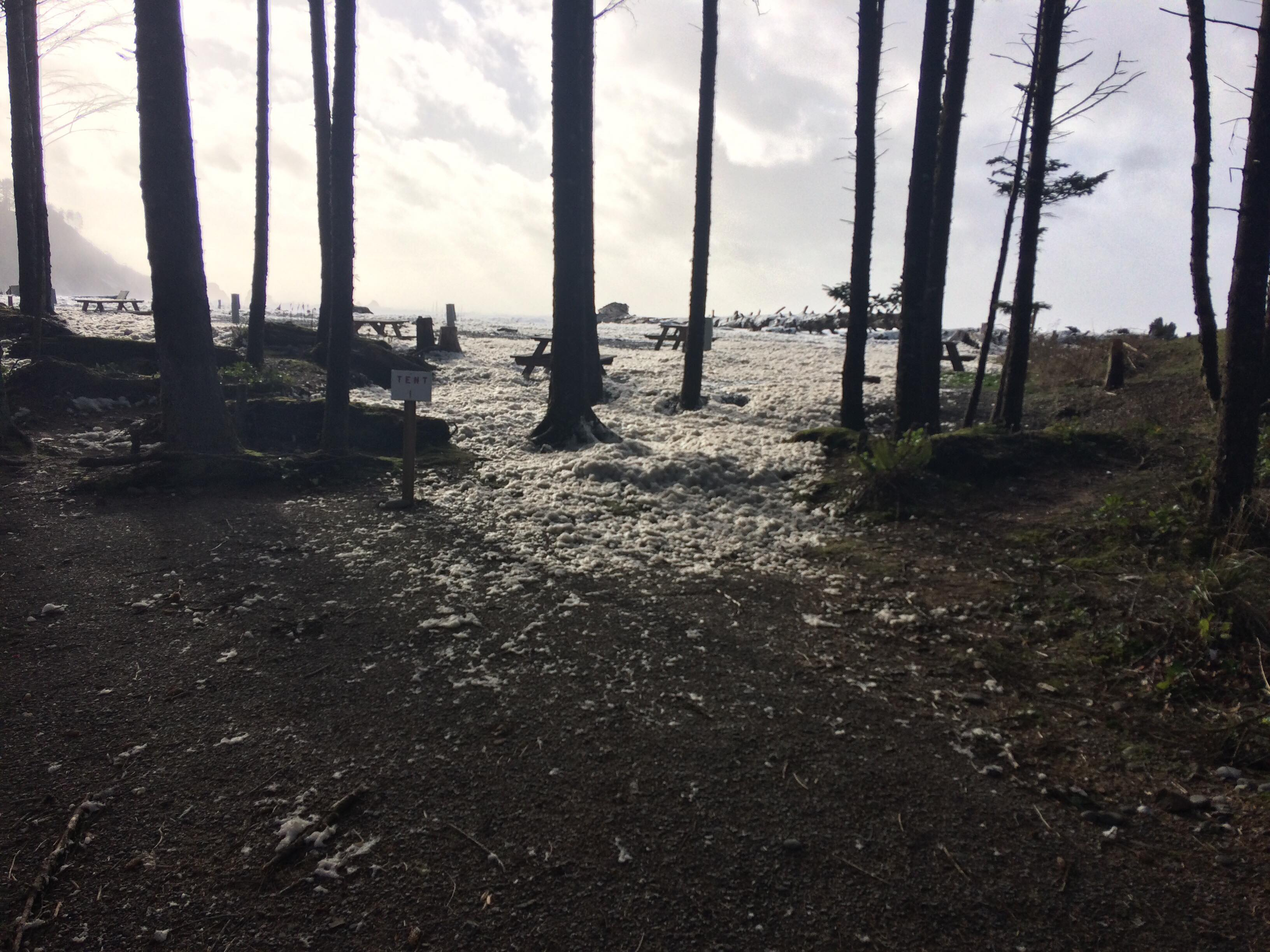 Storm hits LaPush (Photo: Melissa Burnside)