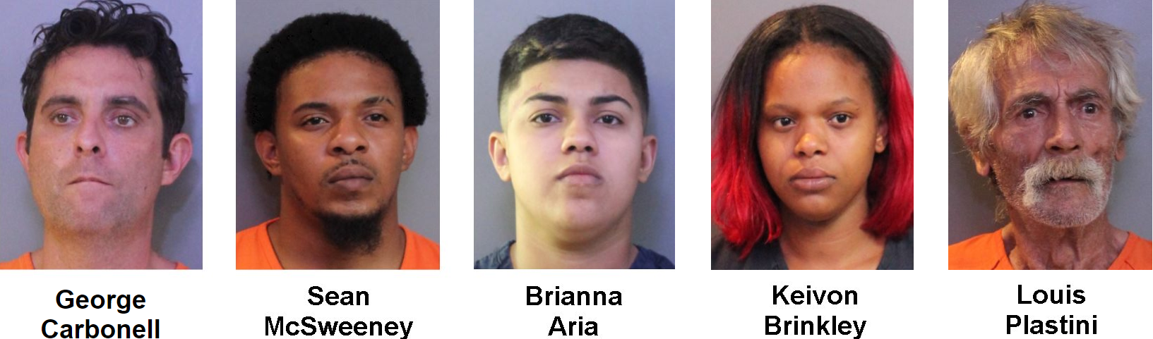 A week long investigation resulted in the arrest of 277 suspects involved in human trafficking and online prostitution. (Polk County Sheriff's Office)