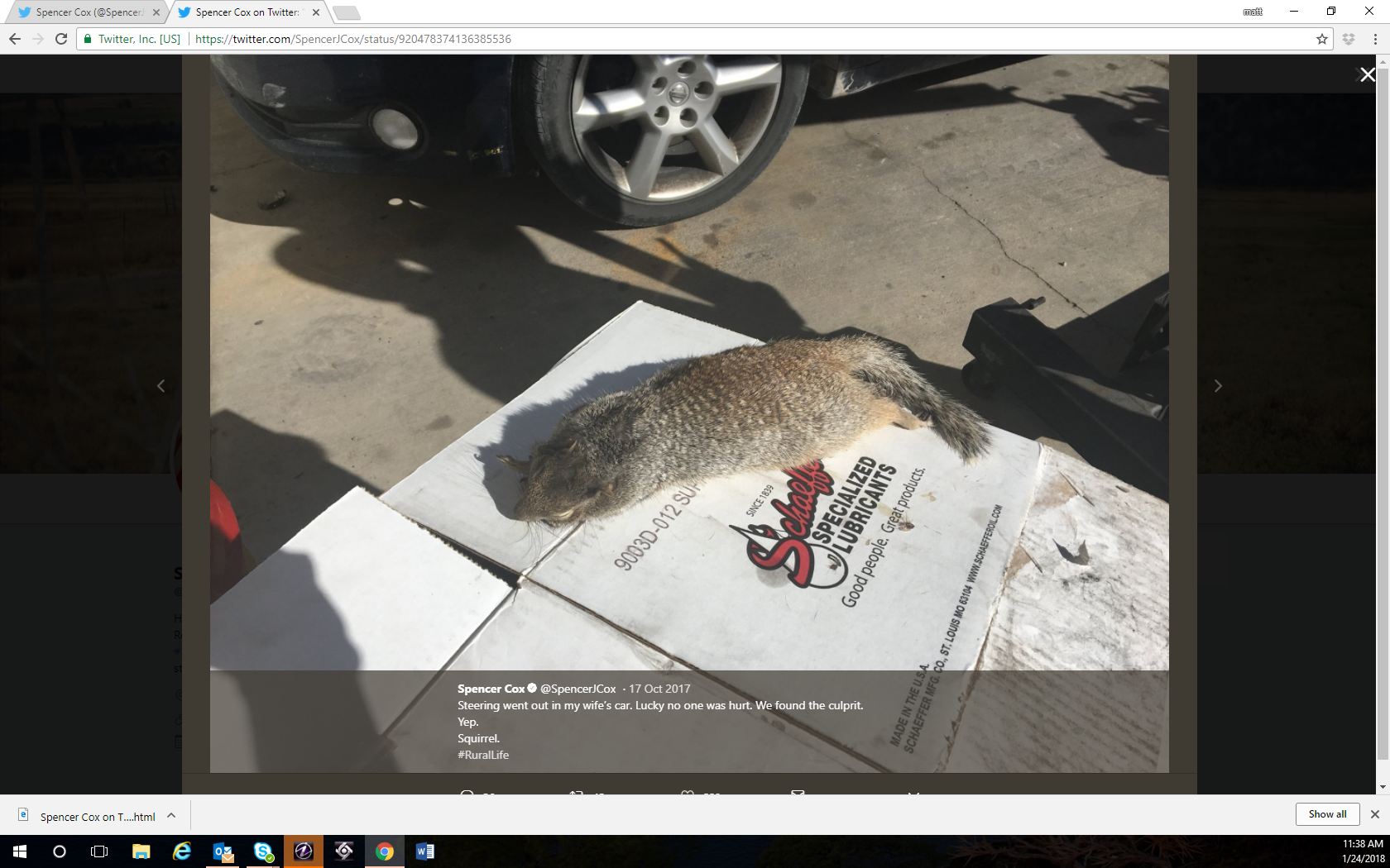 Late last year, Utah's Lt. Governor, Spencer Cox, was having some car trouble. He lamented on twitter that the steering went out. His mechanic found the culprit. A squirrel, looking for a warm bed, had snuck under the hood and destroyed some wires.