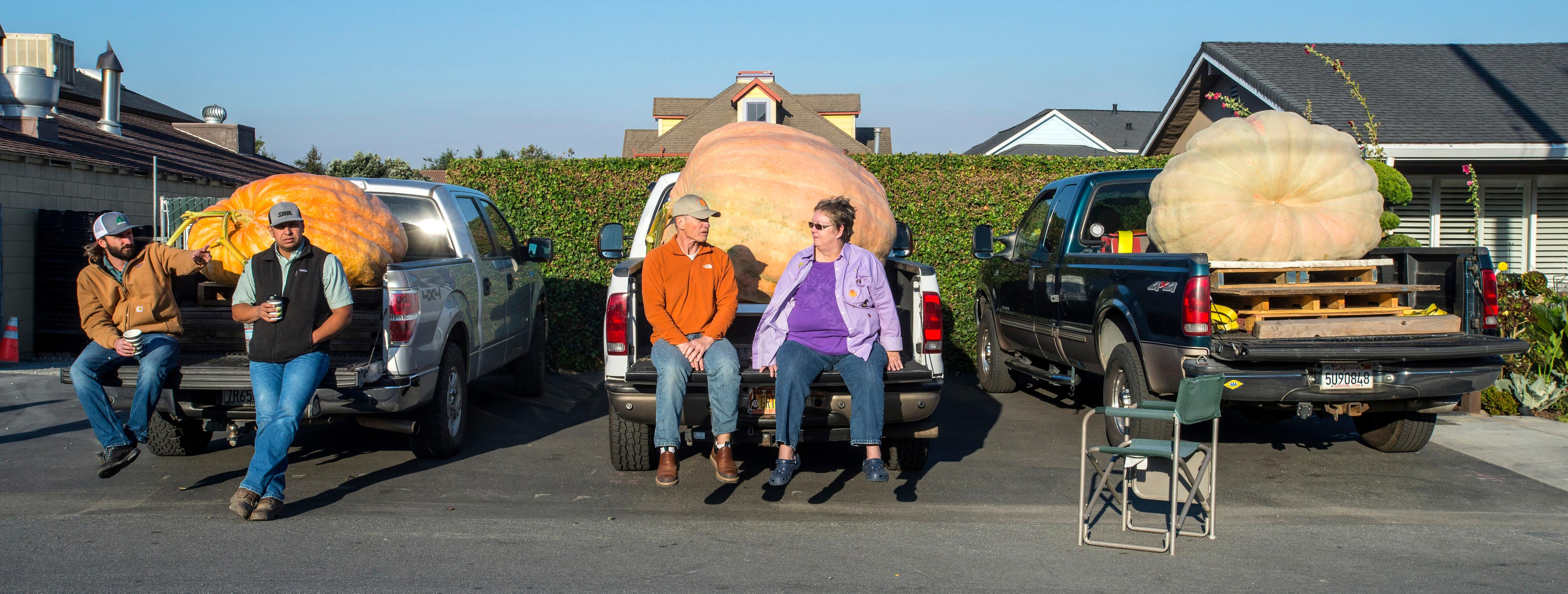 Joel and Mari Lou Holland, center, of Sumner, Wash., sit on the back of their truck as they wait for the start of the 44th World Championship Pumpkin Weigh-Off in Half Moon Bay, Calif., on Monday, Oct.  9, 2017. Holland went on to win the competition with his pumpkin weighing in at 2363 pounds.  (Mark Rightmire/The Orange County Register via AP)