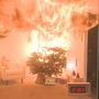 Keeping 'real' Christmas trees safe from fire