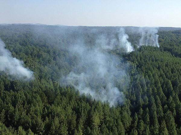 Leeds forest fire 6-27-12