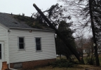 A tree fell on top of a Cleveland resident's home