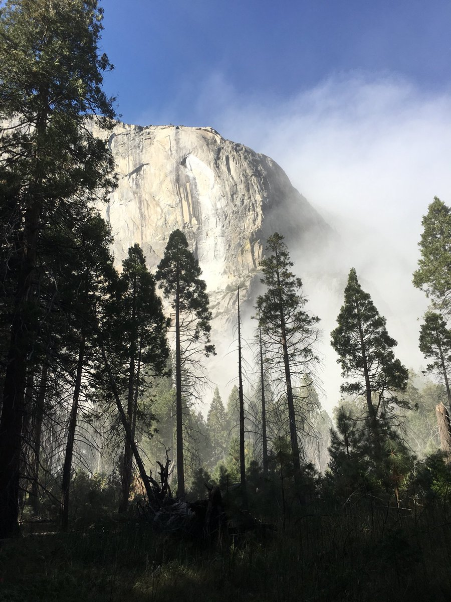 Reports of a second rockslide on El Capitan in Yosemite National Park. (Courtesy: Jennifer Murray)