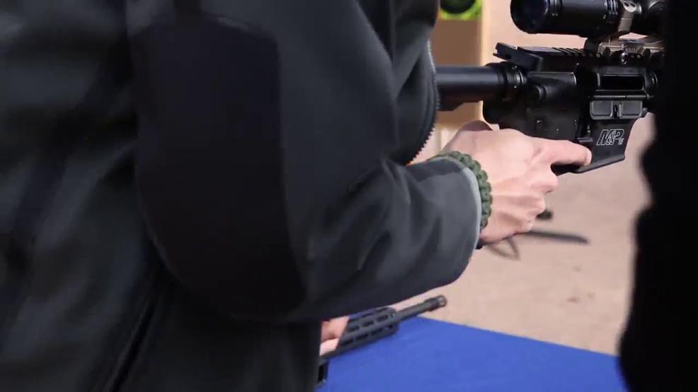 Nevada Senate panel passes gun bill with 'red flag' proposal
