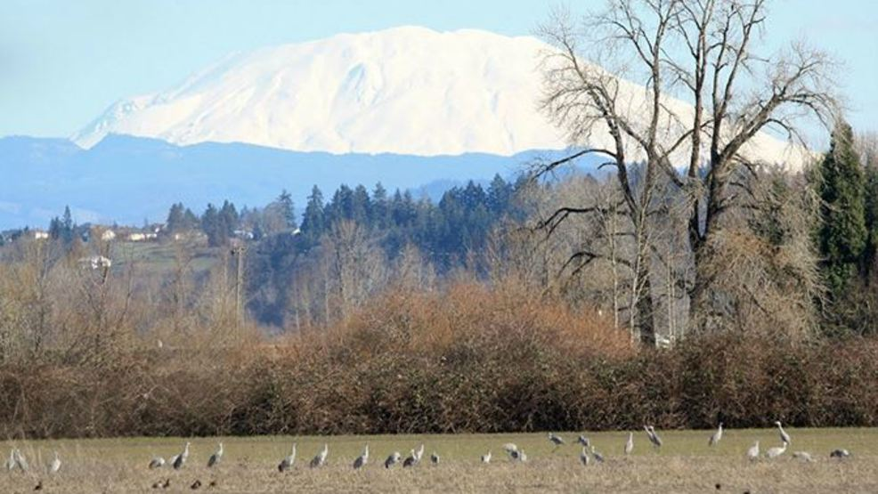 Odfw commission votes unanimously to ban alcohol at sauvie for Oregon fish and wildlife jobs