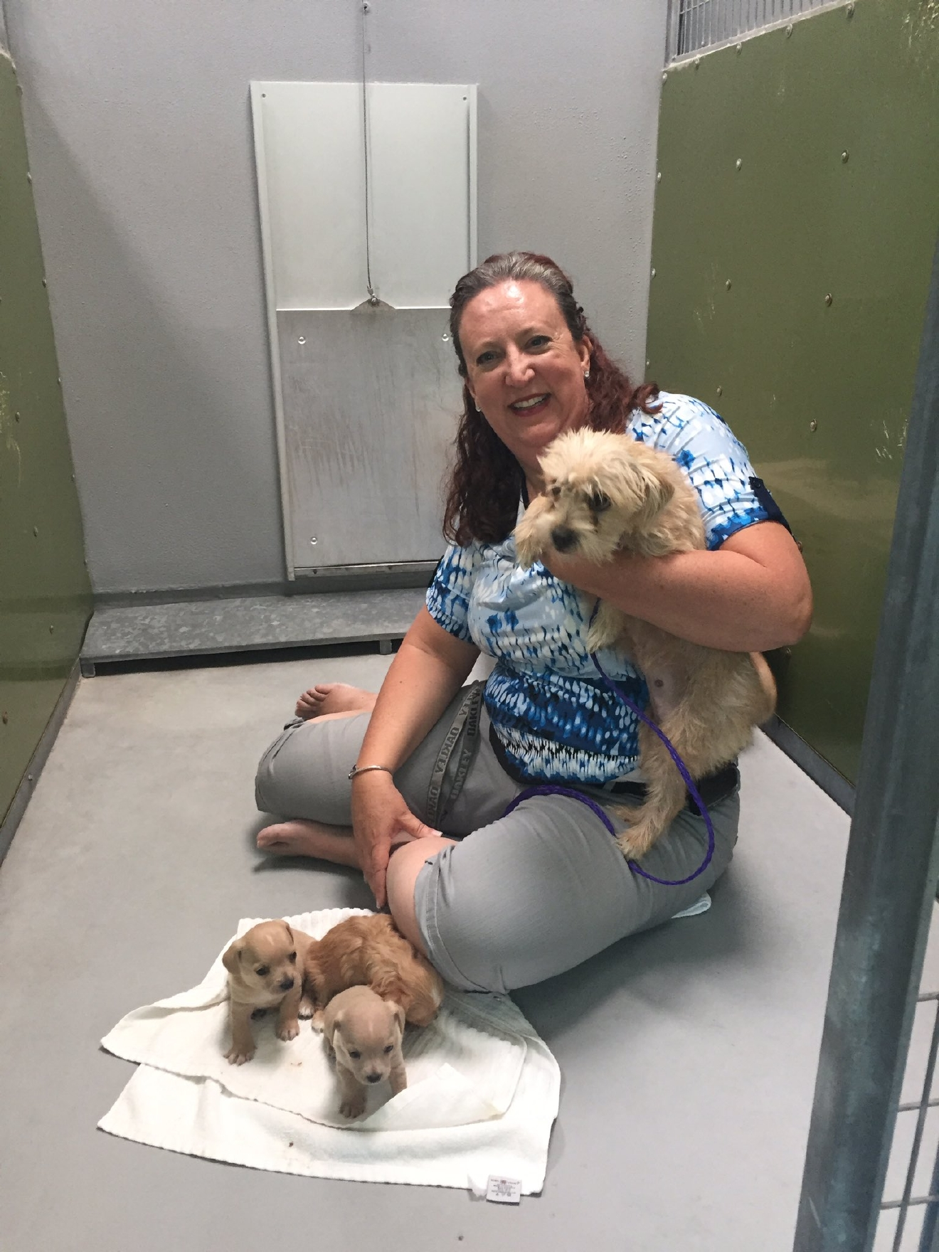 Local hero Polly Williams has helped hundreds of animals in the community find new homes (Chloe Beardsley | KSNV)