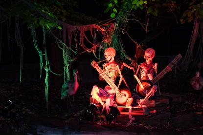 friends of the national zoo will host their annual adults only halloween party night