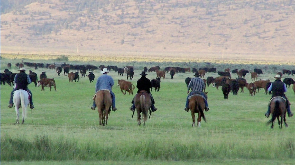 Celebrate National Agriculture Week: Ranchers