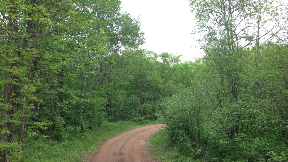 Part of the land in Iron and Ashland Counties where Gogebic Taconite wants to build an iron mine. (WLUK/Andrew LaCombe)