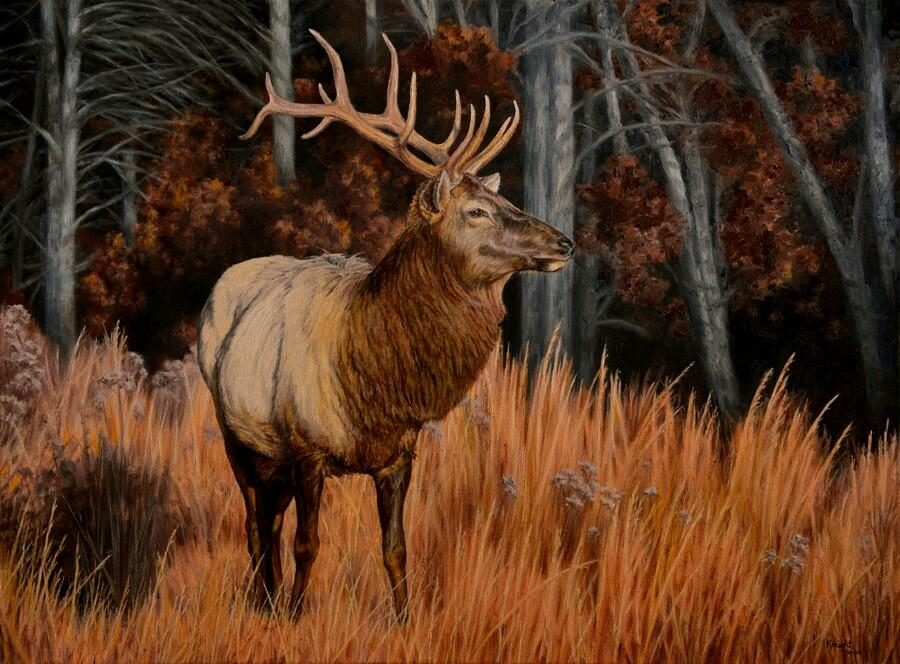The cover art for the 2018 wildlife calendar of the recently released elk, was created by talented artist Rhea Knight of Mason County.<p></p>