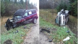 Two injured after driver swerves to miss deer