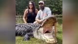 Mammoth 800-pound gator caught in Lake Marion