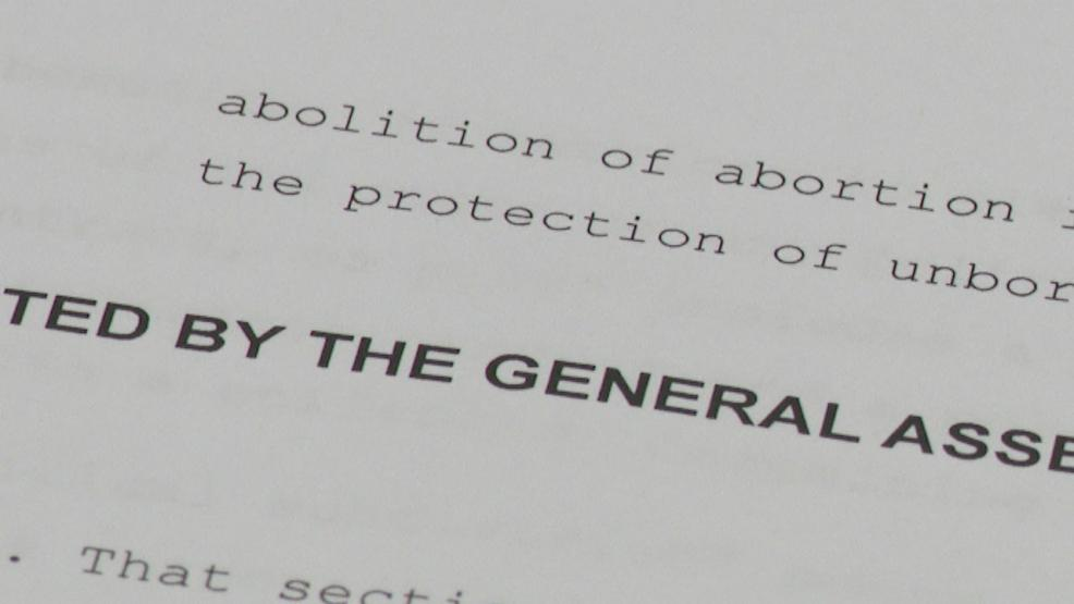 A bill has been introduced in the Ohio State House to ban all abortions in Ohio. (WSYX/WTTE)