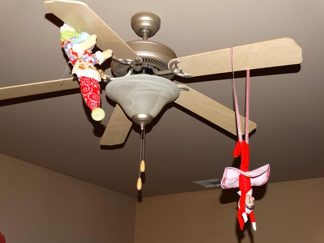 Doing a circus act on the ceiling fan!
