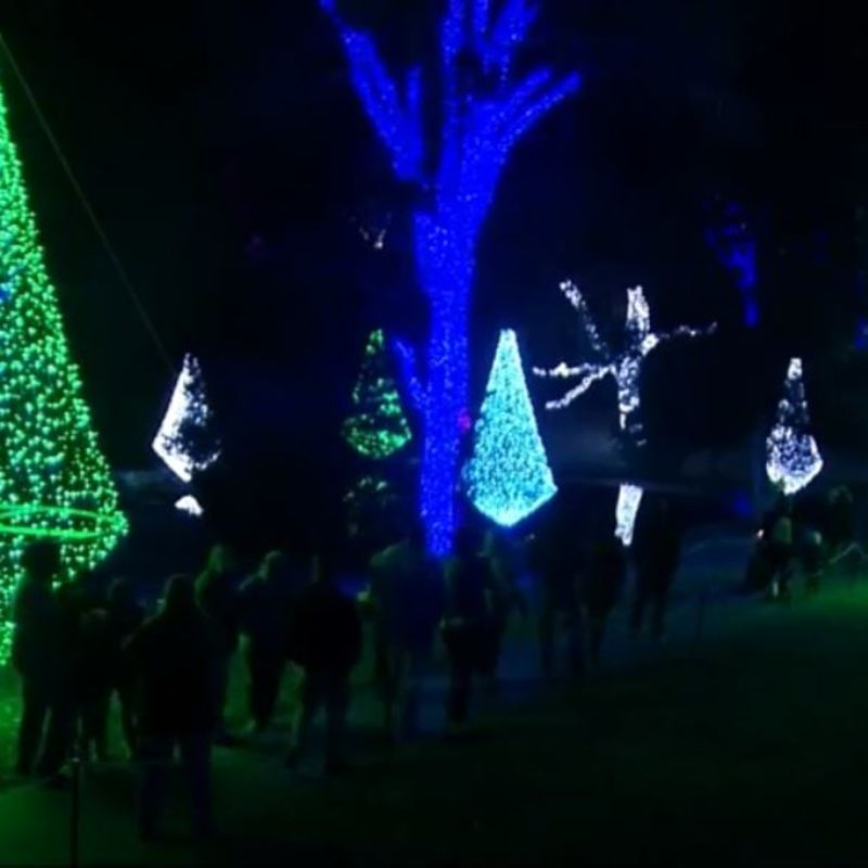 Middle Tennessee Christmas Lights Guide