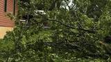 Parts of mid-Missouri experience storm damage
