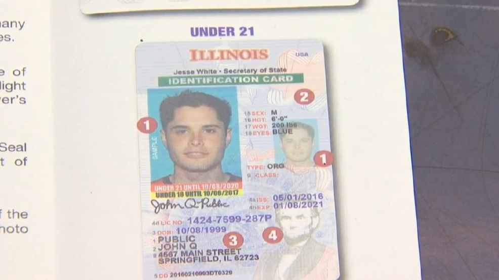 drivers license in illinois requirements