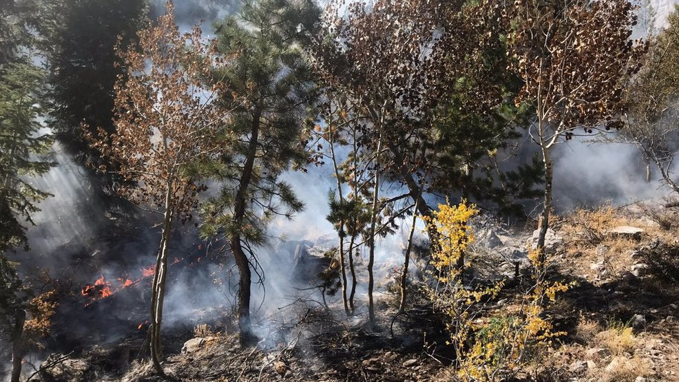 Brush fire at Mary Jane Falls covers half an acre near Las Vegas