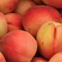 Farmers Report Illinois Peaches Survive Late-Season Freeze