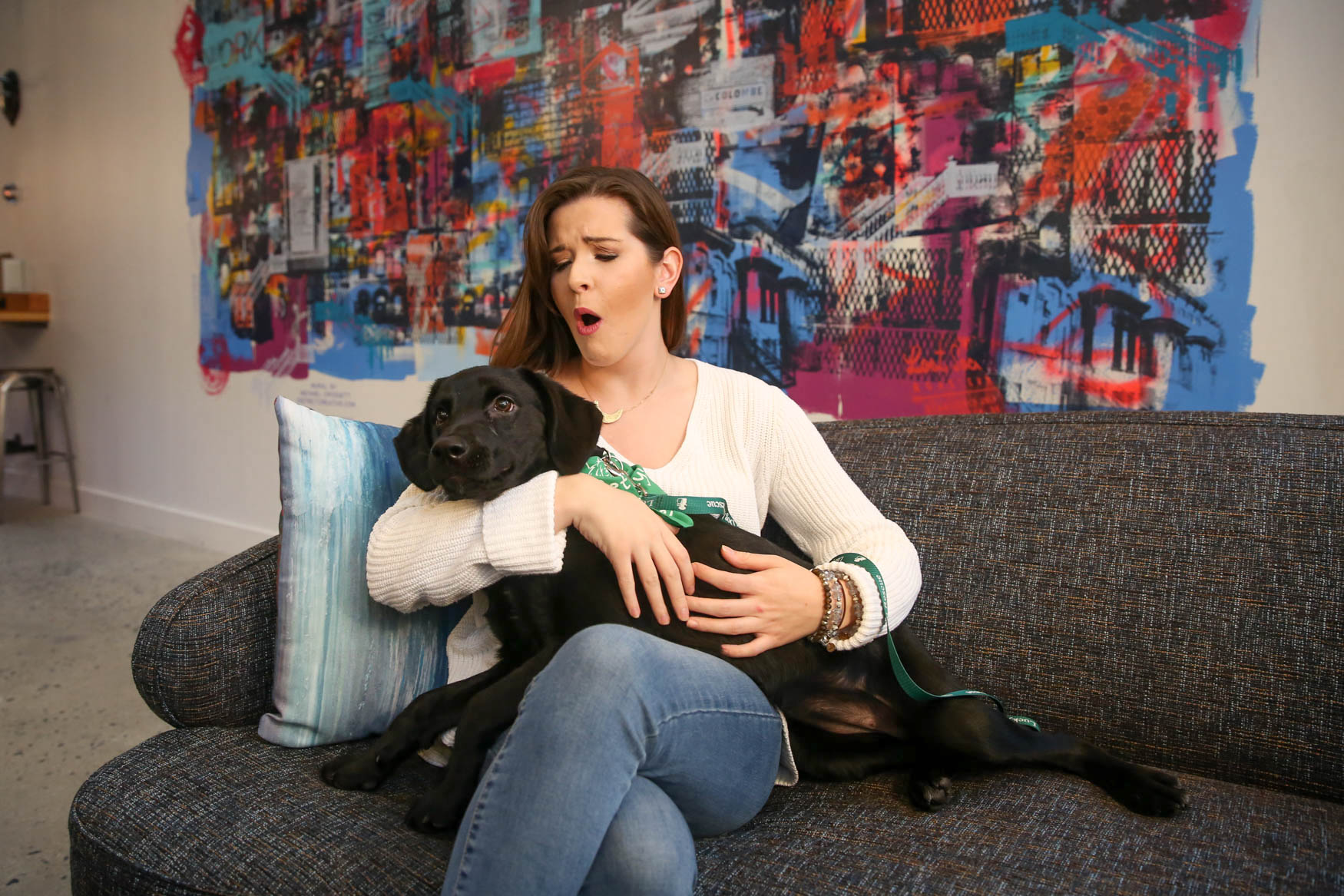 By now, you've probably seen our photos of D.C.'s most eligible bachelorettes and adoptable dogs. However, not every photo makes the cut - usually because the dogs decide to ham it up! Here are some of our cutest outtakes from our photo shoot. (Amanda Andrade-Rhoades/DC Refined)