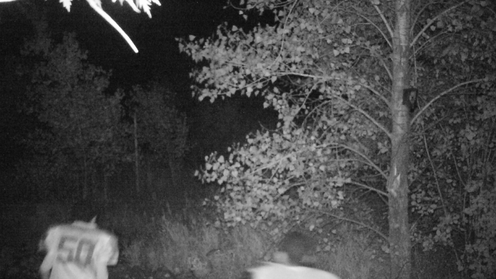 Trail Cam, Courtesy of Town of Menasha Police