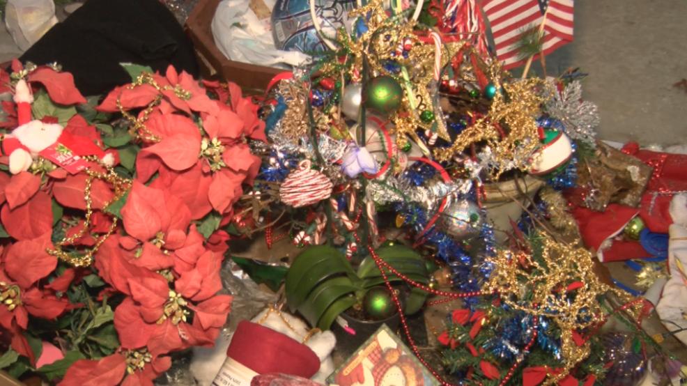 Toledo Christmas Weed.The Gift That Keeps Growing The Toledo Christmas Weed