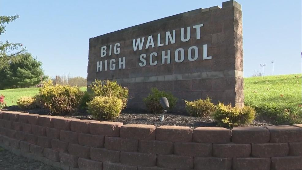 The Big Walnut School District approved a school levy, winning by just 140 votes. (WSYX/WTTE)<p></p>
