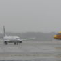 115 flights canceled at Reagan National; D.C. area airports impacted by snow storm