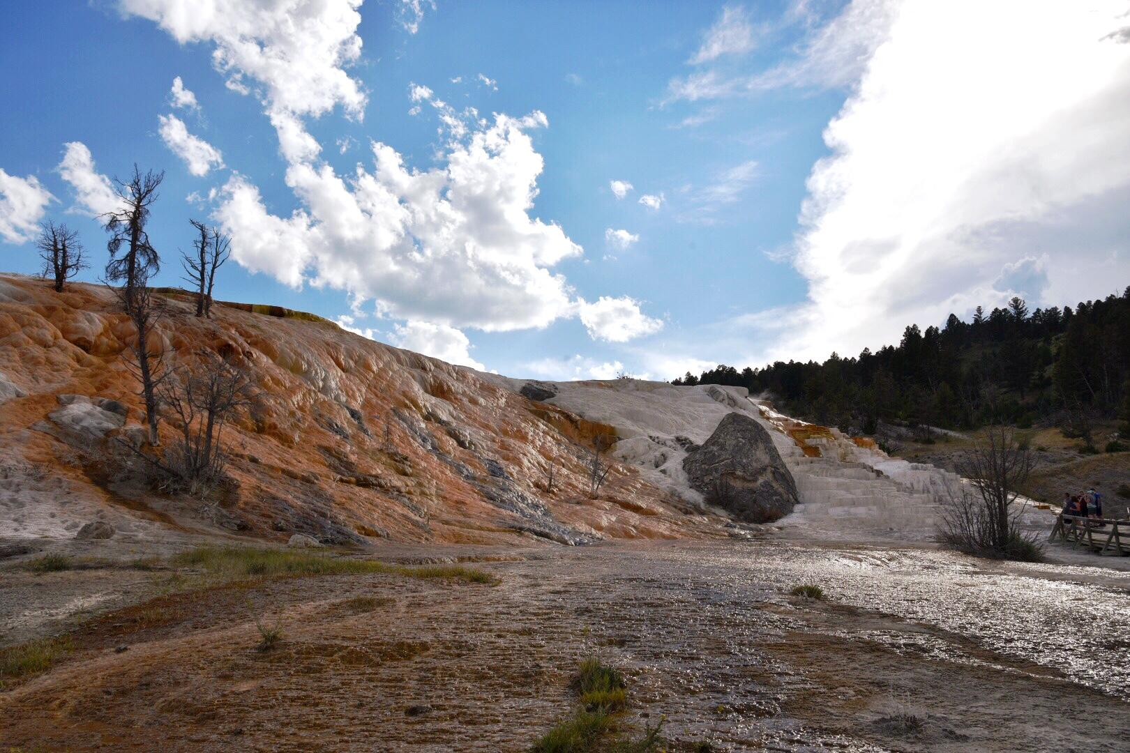 The Mammoth Hot Springs terraces are ever changing. The colors range from pure white to deep oranges to everything in between. (Image: Rebecca Mongrain/Seattle Refined)
