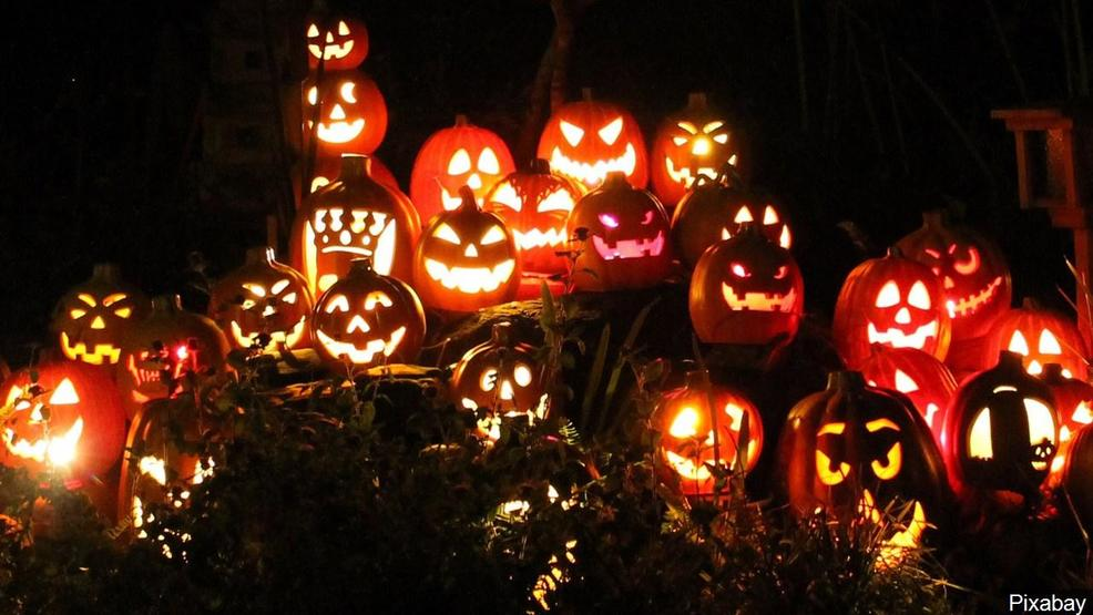 Recycle jack-o-lanterns to help feed livestock, lessen food waste
