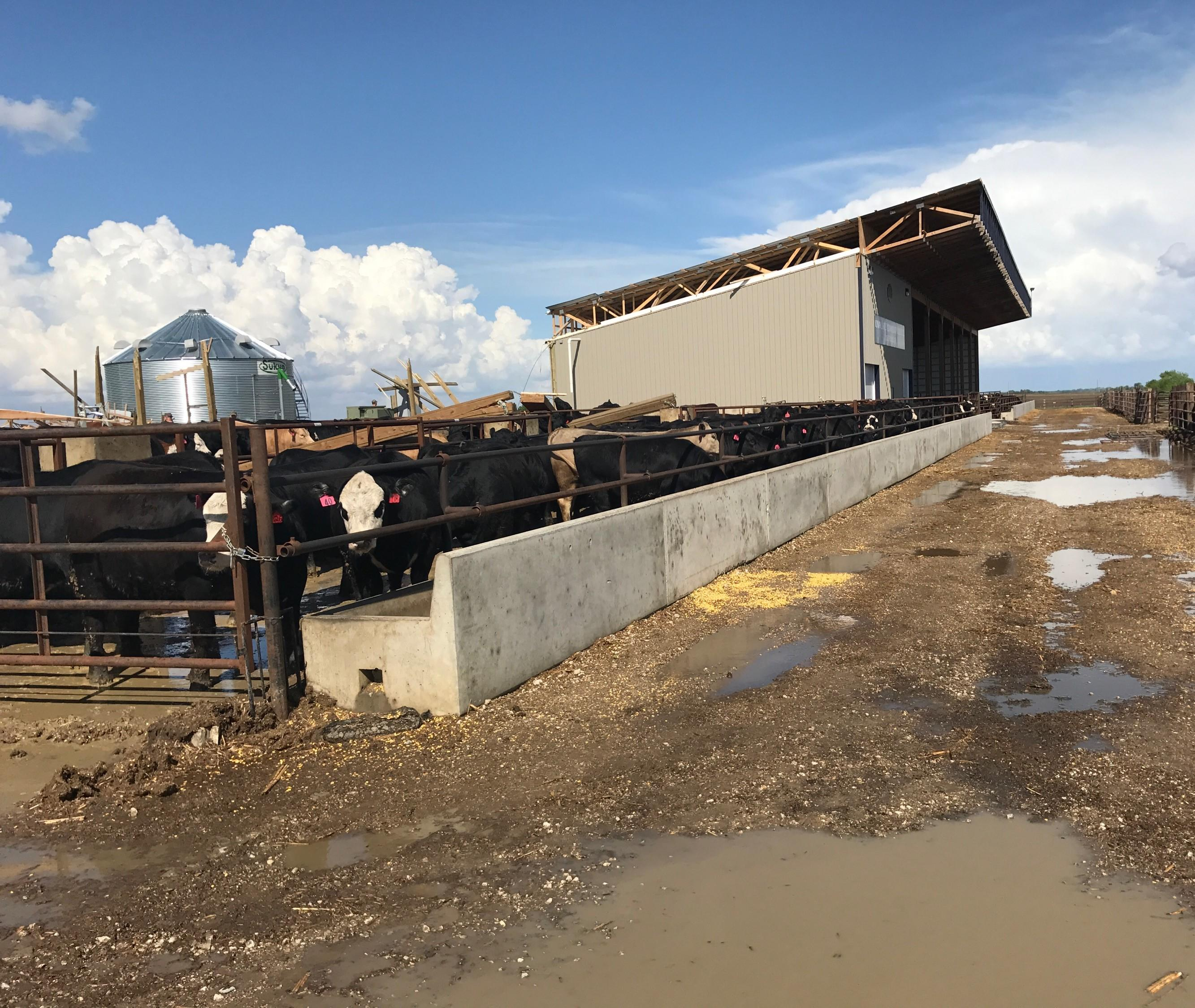 High winds blew through Palo Alto County and caused damage to a portion of the Beef Technology facility at the college farm laboratory west of Emmetsburg.