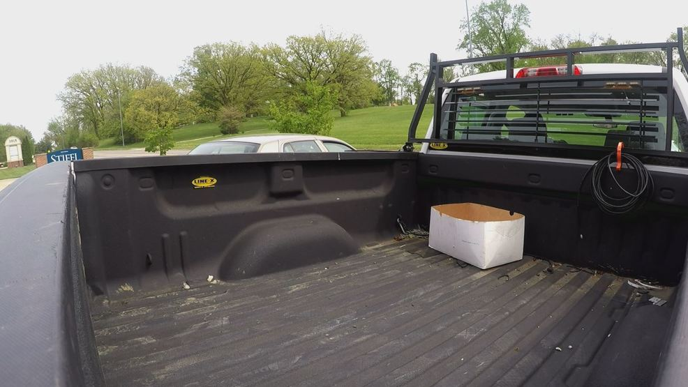 Dogs Killed Riding In Truck Beds