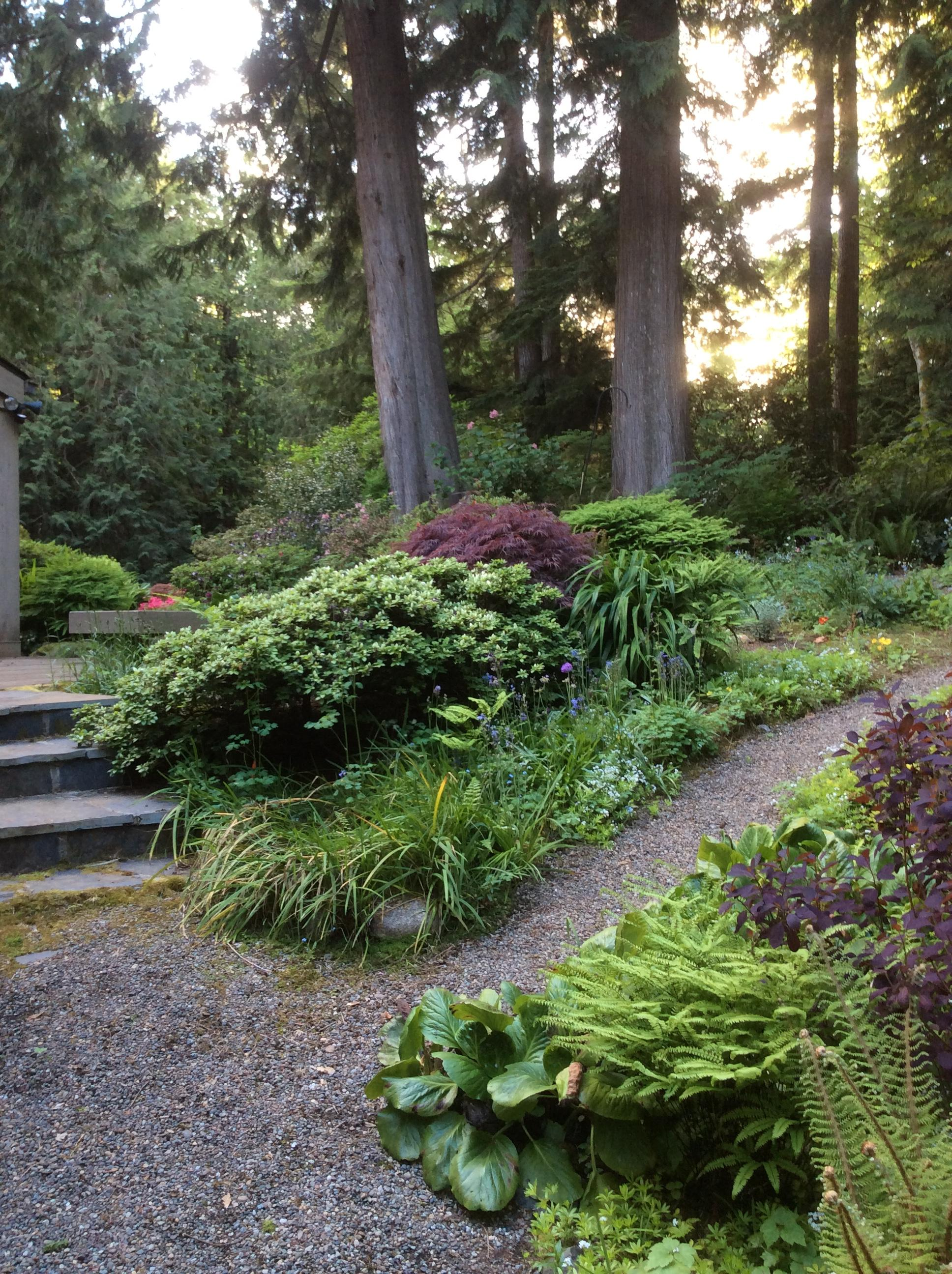 On Saturday, June 22, you are cordially invited to five private gardens in Bainbridge Island, through the Garden Conservancy Open Days program, 10 a.m. to 4 p.m. The Open Day is rain or shine, and no reservations are required. Admission is $10 per garden; children 12 and under are free. 16140 Agate Pass Road NE. Primarily landscaped by the original owners, the garden features a series of seven ponds which flow into each other, circling the house. Each subsequent owner has contributed unusual plants, hardscaping, and sculpture (in this case a totem to commemorate a wedding). Visitors to the garden comment on its quiet serenity and variety of views; particularly lovely is the view over the meadow lawn to the largest pond (Image courtesy of Stephanie Werskey).