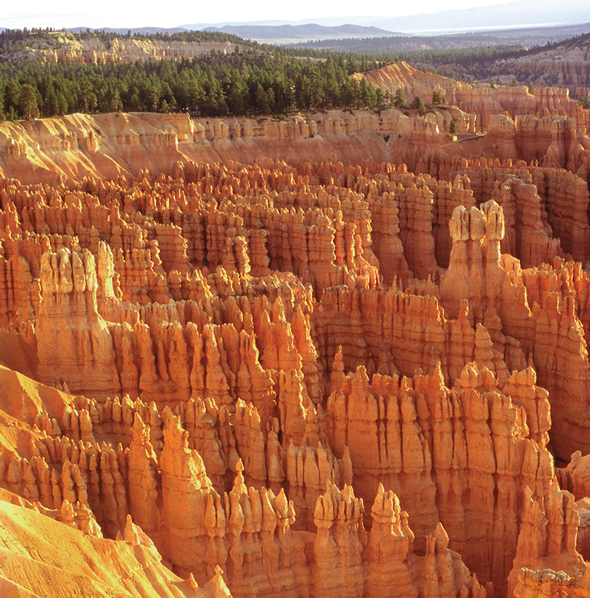 Bryce Canyon Needles.jpg
