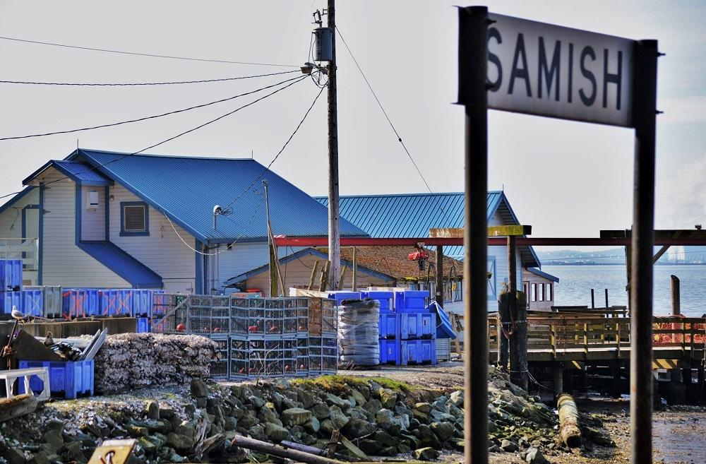 If you love visiting Taylor Shellfish Farms restaurants in Seattle, you'll love seeing where some of the tasty oysters come from. Taylor grows oysters on about 1,700 acres of Samish Bay Tideland and have been doing so for about 100 years. (Photo Courtesy: Taylor Shellfish Farms Facebook page)